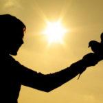 Как сделать свою жизнь более насыщенной?